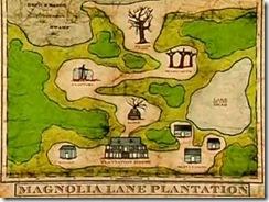 magnolia-lane-01