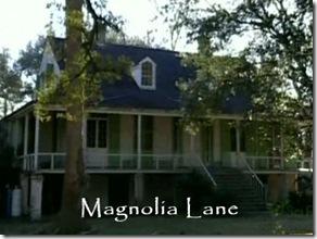 magnolia-lane-02